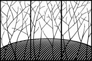 Tree Screen B