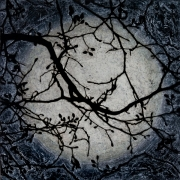Light of the Silvery Moon